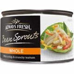 Bean Sprouts (tinned)